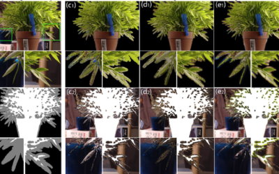 Learning-based Sampling for Natural Image Matting